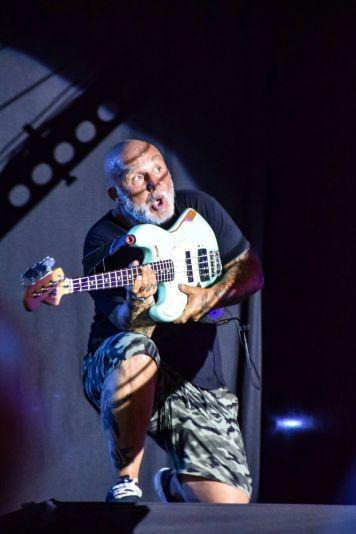 Flavio Cianciarulo: Bajista y Guitarrista